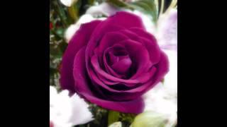 Wedding piano music - wedding song - romantic classical piano solo