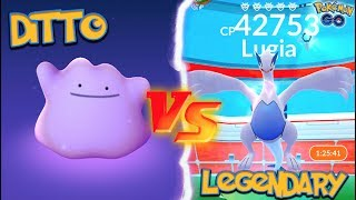 Ditto  - (Pokémon) - WHAT HAPPENS WHEN YOU USE A DITTO AGAINST A LEGENDARY IN POKÉMON GO?!