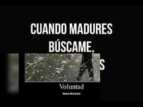 Ovejas negras macaco (Juan Vicente Plaza Garcia) dos