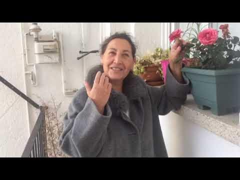 Gaia ✿ Campanya Verkami amb Patricia Martín, Enri Caballero, Carme Palahí i Francesc López