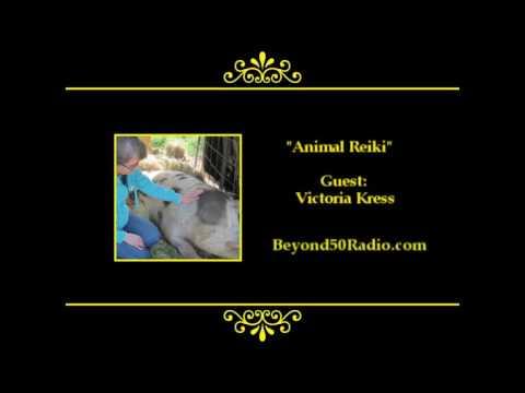Animal Reiki - YouTube