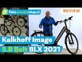 Image 5.B Belt BLX 2021