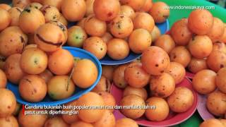 Jus Buah Gandaria Perpaduan Jus Mangga Dan Jeruk Dengan Manfaat Luar Biasa Kuliner Situs Budaya Indonesia