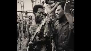 Buddy Guy And Junior Wells Hoodoo Man Blues