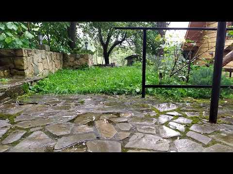Шум дождя и грома в саду (слушать в наушниках)