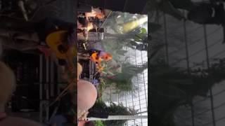 Dave mccabe and Ian Skelly, Hello conscience, Sefton park palm house