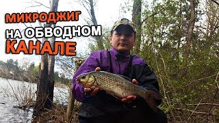 Ловля рыбы на обводном канале в тушино