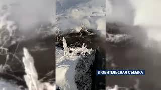 Черемновский сахарный завод сбрасывал отходы в озеро