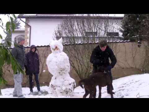 Feat. - Sněží