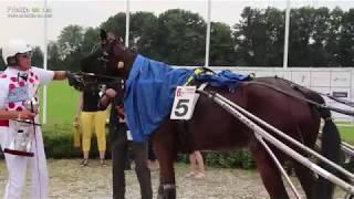Kasaške dirke v Ljutomeru