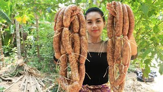 Yummy cooking Sausage recipe - Cooking skill