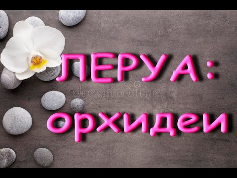 "ЛЕРУА:завоз ОРХИДЕЙ,купила ТРИЛИПС!13.03.20,ТЦ ""Космопорт"",Самара."