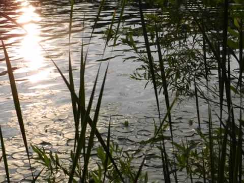 Rifle River Program - Cole Canoe Base - Michigan Crossroads