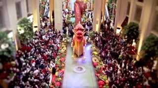 Chinese New Year Dragon Dance At The Venetian And The Palazzo Las Vegas   Lohan School Of Shaolin