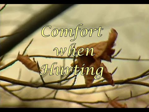 Comfort when Hurting from Grief