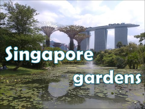 Tuine/parke in Singapoer