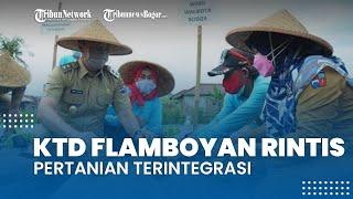KTD Flamboyan Rintis Pertanian Terintegrasi, Dedie A Rachim Minta DKPP Bogor Beri Dukungan Bibit