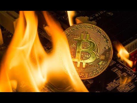 Liūtai den bitcoin prekybininkas