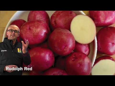 , title : 'Grow your Own Potatoes!  Paraic's Top 3 Varieties of Seed Potatoes