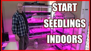 Starting seedlings indoors - set up and lights