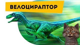 Велоцираптор   Самое интересное про динозавров   Наука для детей Динозавры