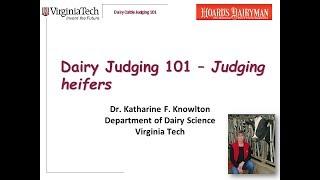 Dairy Judging 101 - Judging heifers, part 1