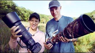 Wildlife Zooms vs Primes (plus lens recommendations)