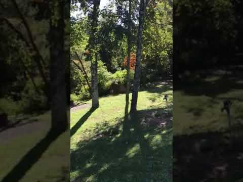 Video Of Fancy Gap Cabins and Campground, VA