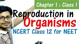Reproduction in organisms class 12 NCERT | NEET biology preparation from NCERT class 12 biology book - Download this Video in MP3, M4A, WEBM, MP4, 3GP