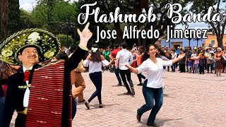 Sorprendente Flashmob con BANDA - MÉXICO | #SomosMásLosBuenos