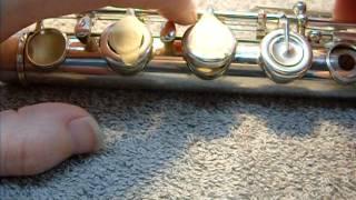 Flute Hinge Problem