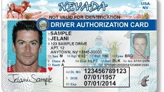 Nevada Driver's License - What to bring and expect at the DMV