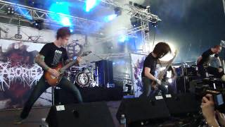 Hellfest 2009 - Aborted - Meticulous invagination