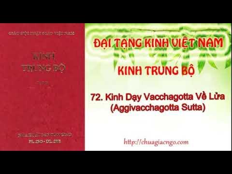 Kinh Trung Bộ - 072. Kinh Vacchagotta về lửa