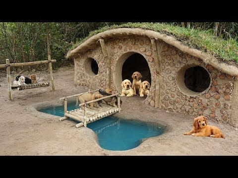 Rescue 7 Newborn Puppies And Start Building Hobbit Dog Home