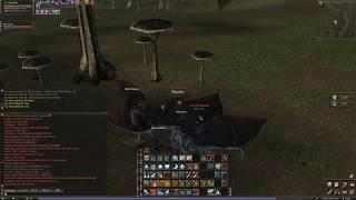 Lineage 2 Classic Warlord Forsaken Plains NA Aden Server