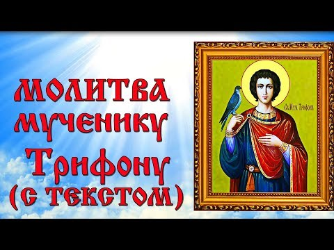 Молитва святому мученику Трифону (аудио молитва с текстом и иконами)