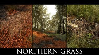 Skyrim LE Mods - Northern Grass