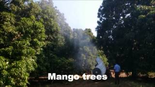 preview picture of video 'Mango Sprayer - Vento'