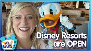 Disney World Resorts Have Reopened! See Whats NEW, Whats Different And What We Didnt Expect!