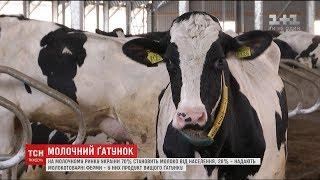 В Україні запровадять обмеження з використання молока другого ґатунку
