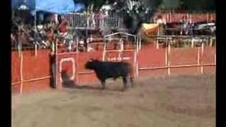 preview picture of video 'Concurso de Recorte villar 07/ toro1'