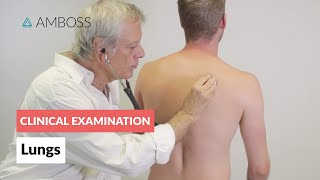 Examination of the Lungs - Clinical Examination