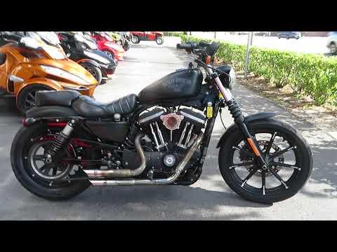2016 Harley-Davidson Iron 883™ in Sanford, Florida - Video 1