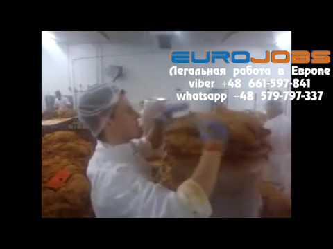 Работа в Польше на цеху мяса для кебаба EuroJobs