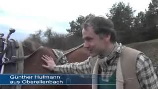 Landwirtschaft Nur Mit Muskelkraft: Familie Hufmann Aus Oberellenbach.