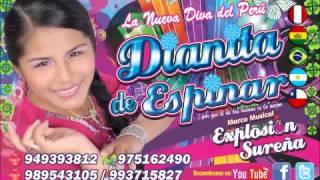 Descargar MP3 de Dianita De Ezpinar Tema Mama Estela gratis