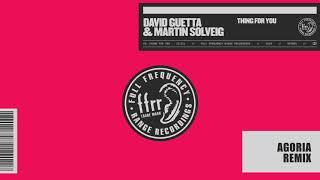 David Guetta & Martin Solveig   Thing For You (Agoria Remix)