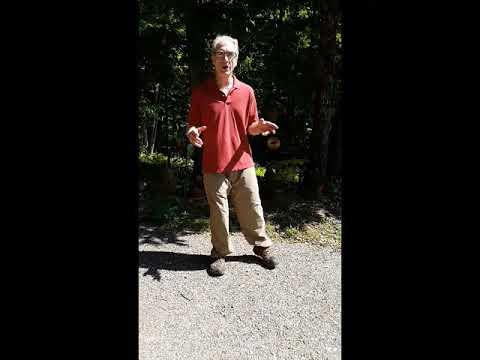 Joe Pandolfo, Certified Tai Chi Instructor talks about Tai Chi ...