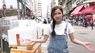 東張西望 |  垃圾屋奇母女(I) | 垃圾 | 鼠患 | 業主 | 少女